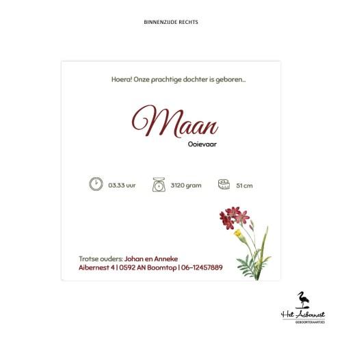 Maan_web-br