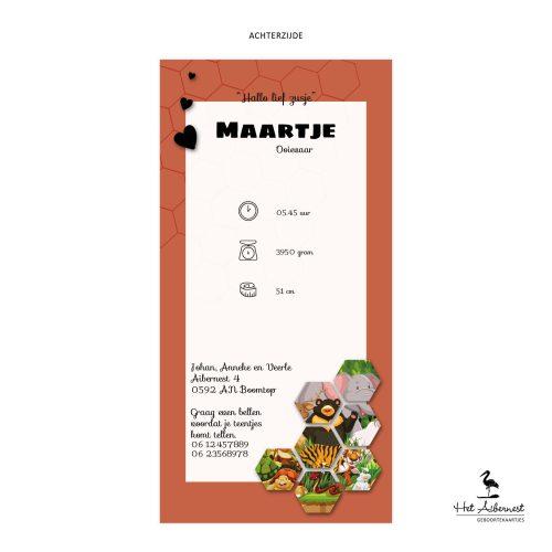 Maartje_web-az