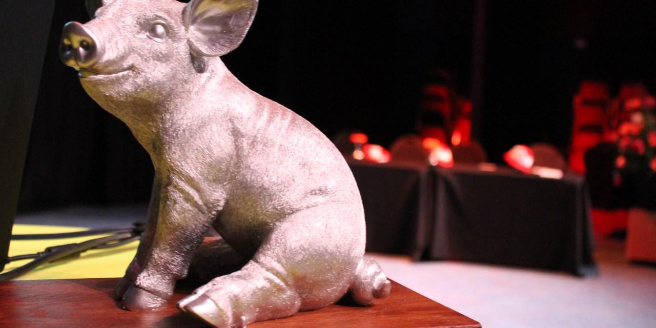 """Foto impressie van """"het beste idee van varkensland"""" 2017"""
