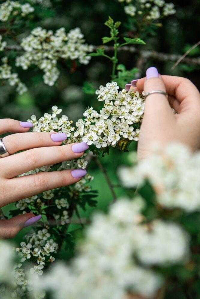 Het Gezinsleven - Lifestyle - Hobby's - Thuis je nagels verzorgen zoals in een salon! - Paarse kleur nagellak