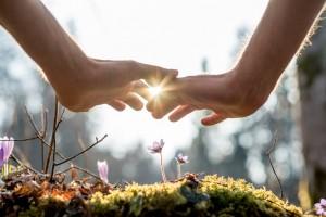 843x563 handen boven bloeiende bloem:passie:bewijsdrang