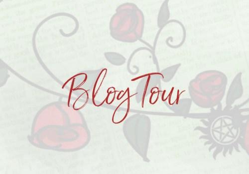 Blogtour: Silver Hollow van Jennifer Silverwood