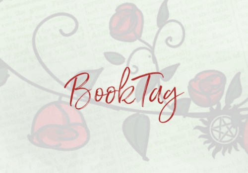 Twas The Night Before Crhistmas Book Tag!