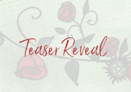 Excerpt reveal: Park Avenue Player van Penelope Ward en Vi Keeland