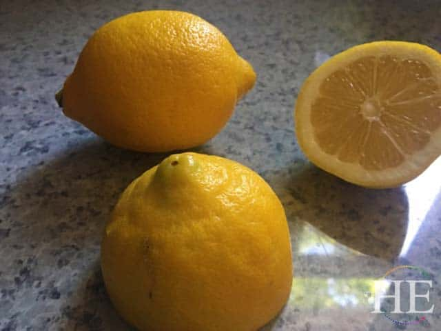 beautiful fresh sliced lemons