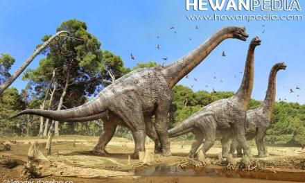 Mengenal Dinosaurus Kadal Raksasa Penguasa Bumi