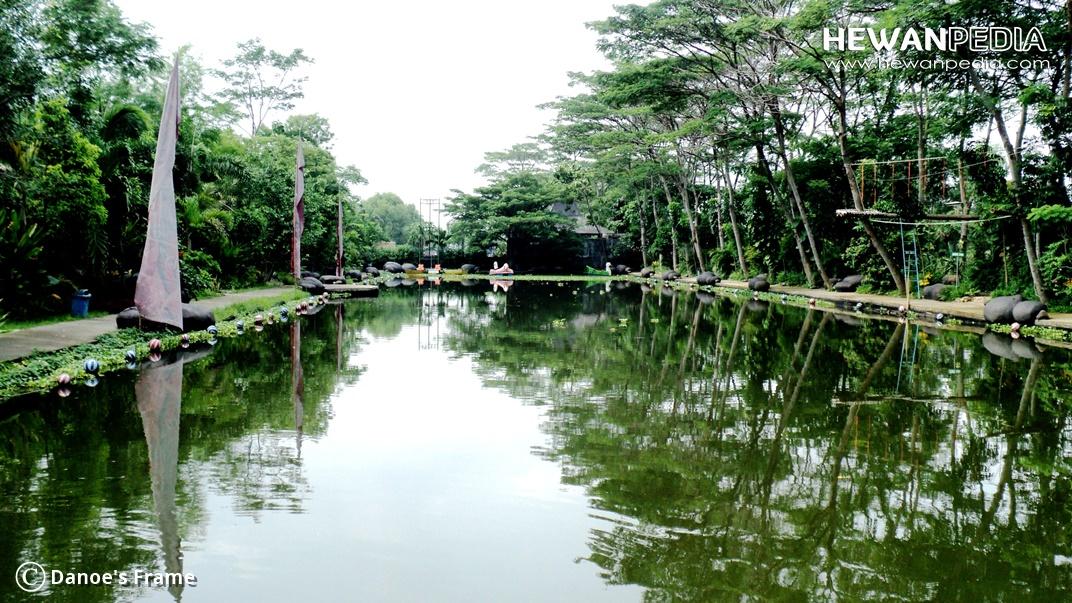 Perbedaan Kolam pancing Harian dan kolam Galatama