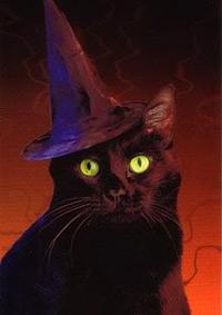 Warum haben Hexen schwarze Katzen? Hexerei