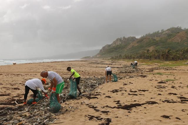 Várias pessoas a limpar o lixo de uma praia
