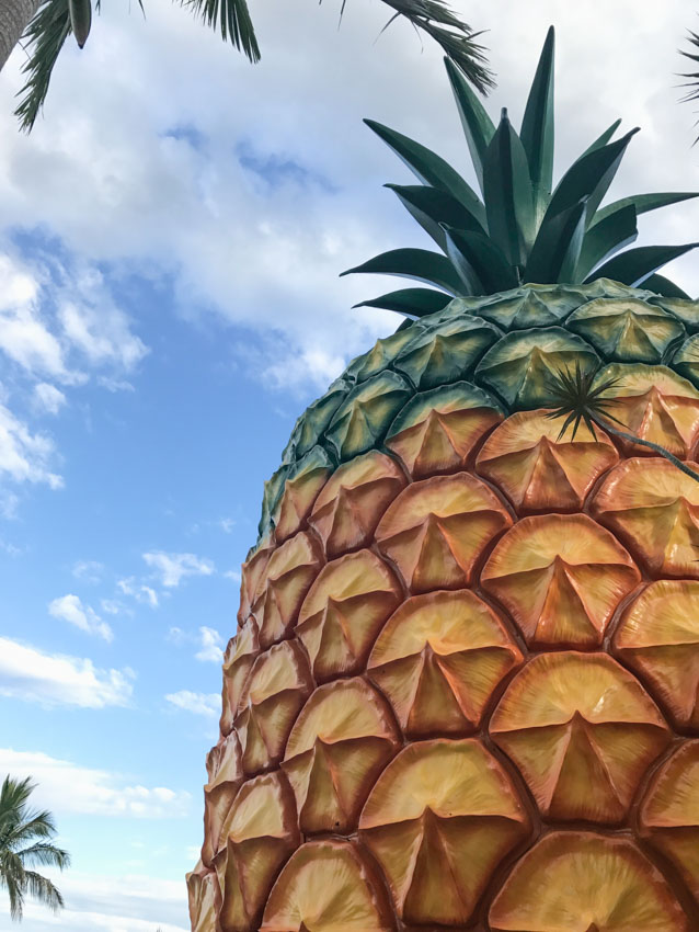 The Big Pineapple in Queensland up close
