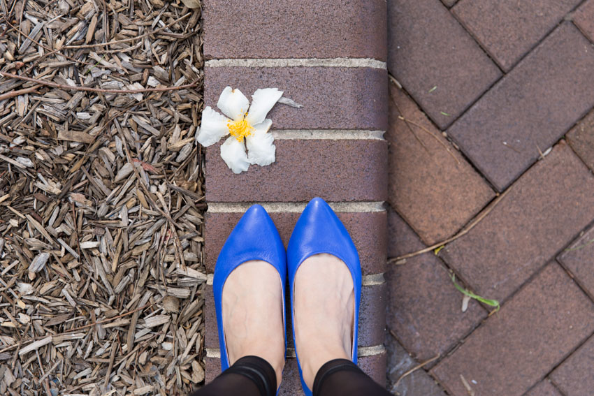 Close up of my shoes from my view with a tattered white flower nearby