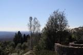 Blue-Mountains-Botanic-Gardens-3