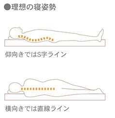 理想的な寝姿勢のイラスト