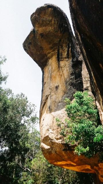 Sigiriya, serpent's head| Sri Lanka