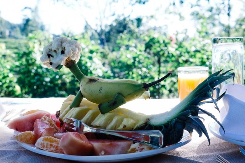 Suranga Fruit platter | Stafford Bungalow, Sri Lanka