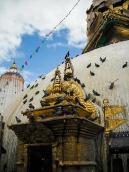 Nepal Pokhara Pre Earthquake