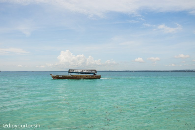 Day out at Prison Island Changuu Zanzibar