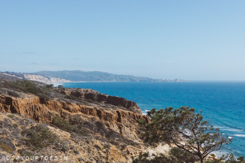 View from Torrey Pines, San Diego