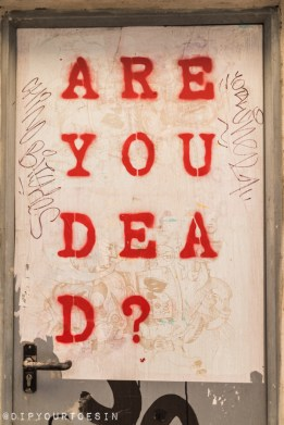Are You Dead | Walking Tour of Street Art in Valencia, Spain