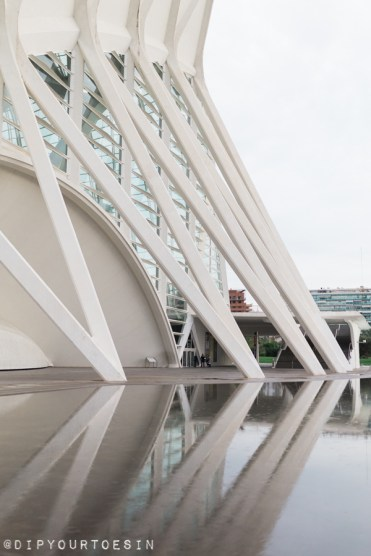 Ciudad de las Artes y las Ciencias | City of Arts and Sciences | Valencia