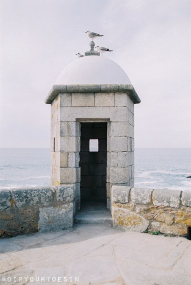 Coastal walk | Why you should visit Porto