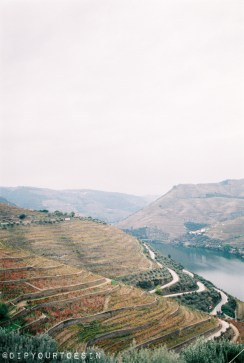 Why you should visit Porto | Douro Valley