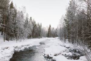Why Lapland Should Be On Every Travel Bucket List