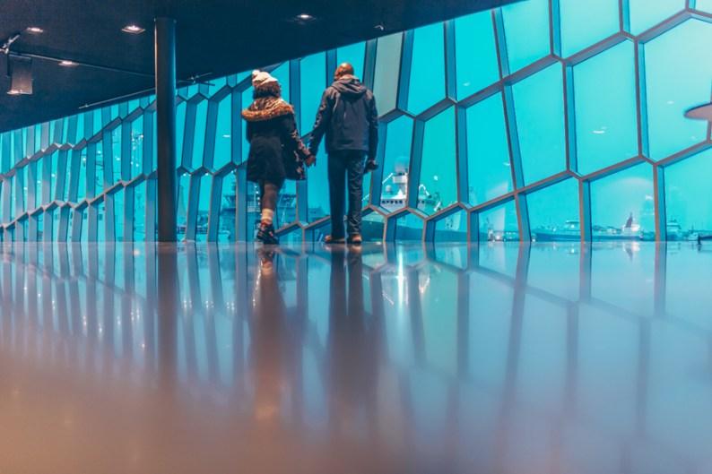 Walking in Harpa Concert Hall, Austurbakki, Reykjavík, Iceland