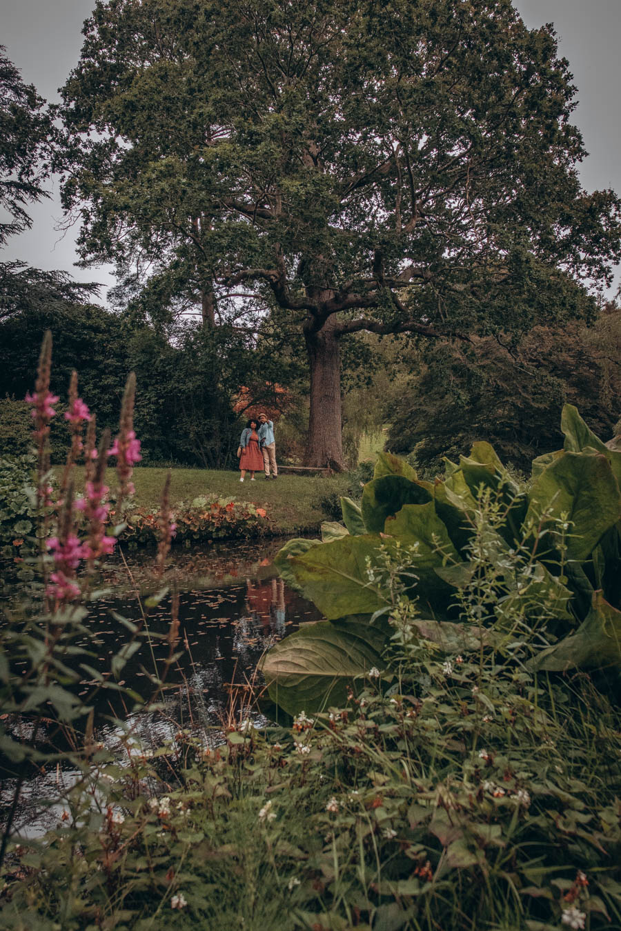 Omo and Eulanda at High Beeches   Garden West Sussex