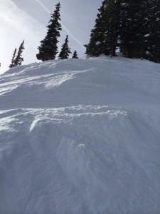 Looking_Up_On_Synders_Ridge