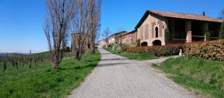 Tudo que você precisa saber para dirigir na Itália