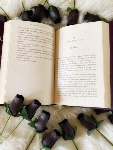 Novel by Melissa De La Cruz