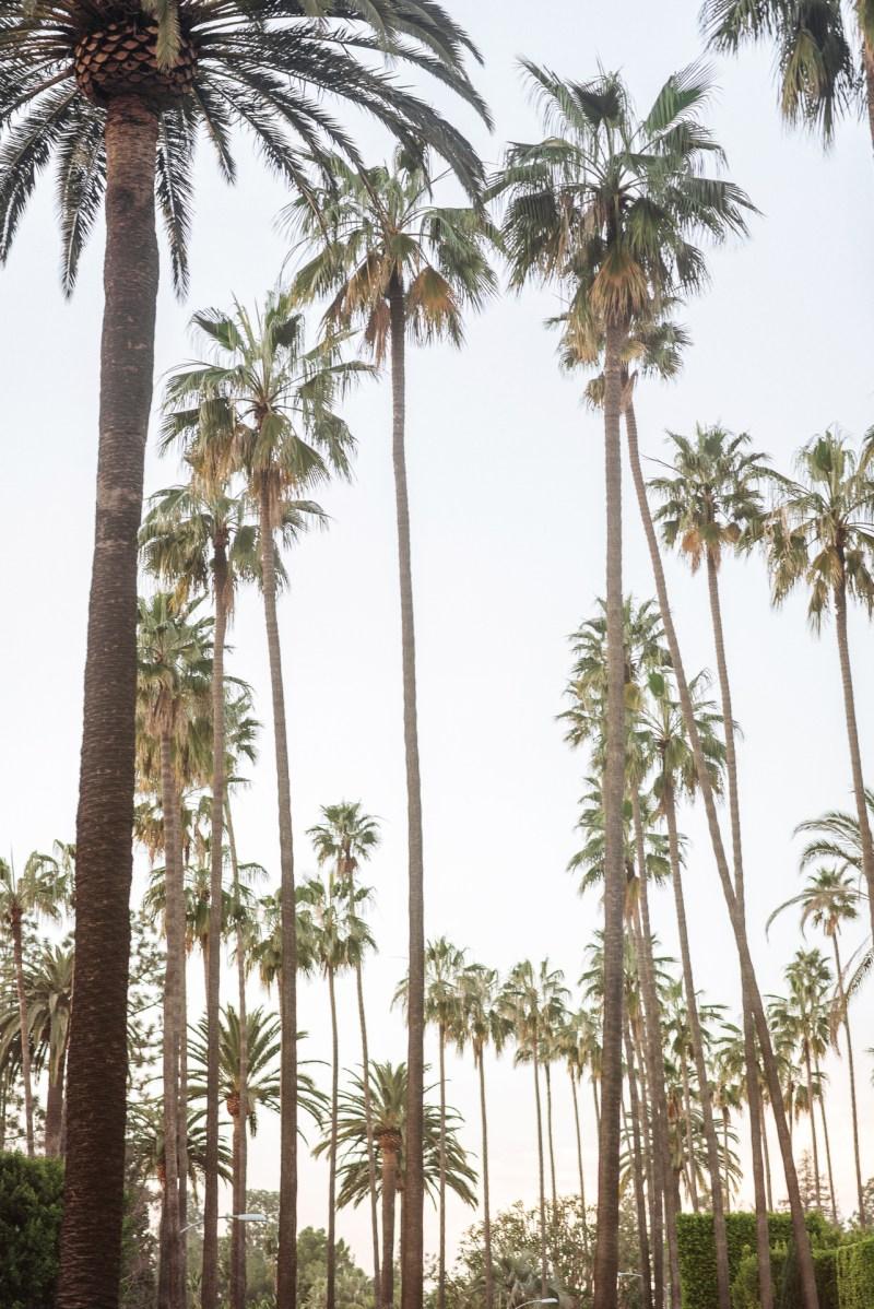 48 hour Los Angeles trip