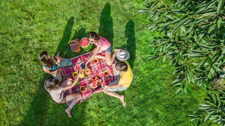 family having a picnic dinner outside