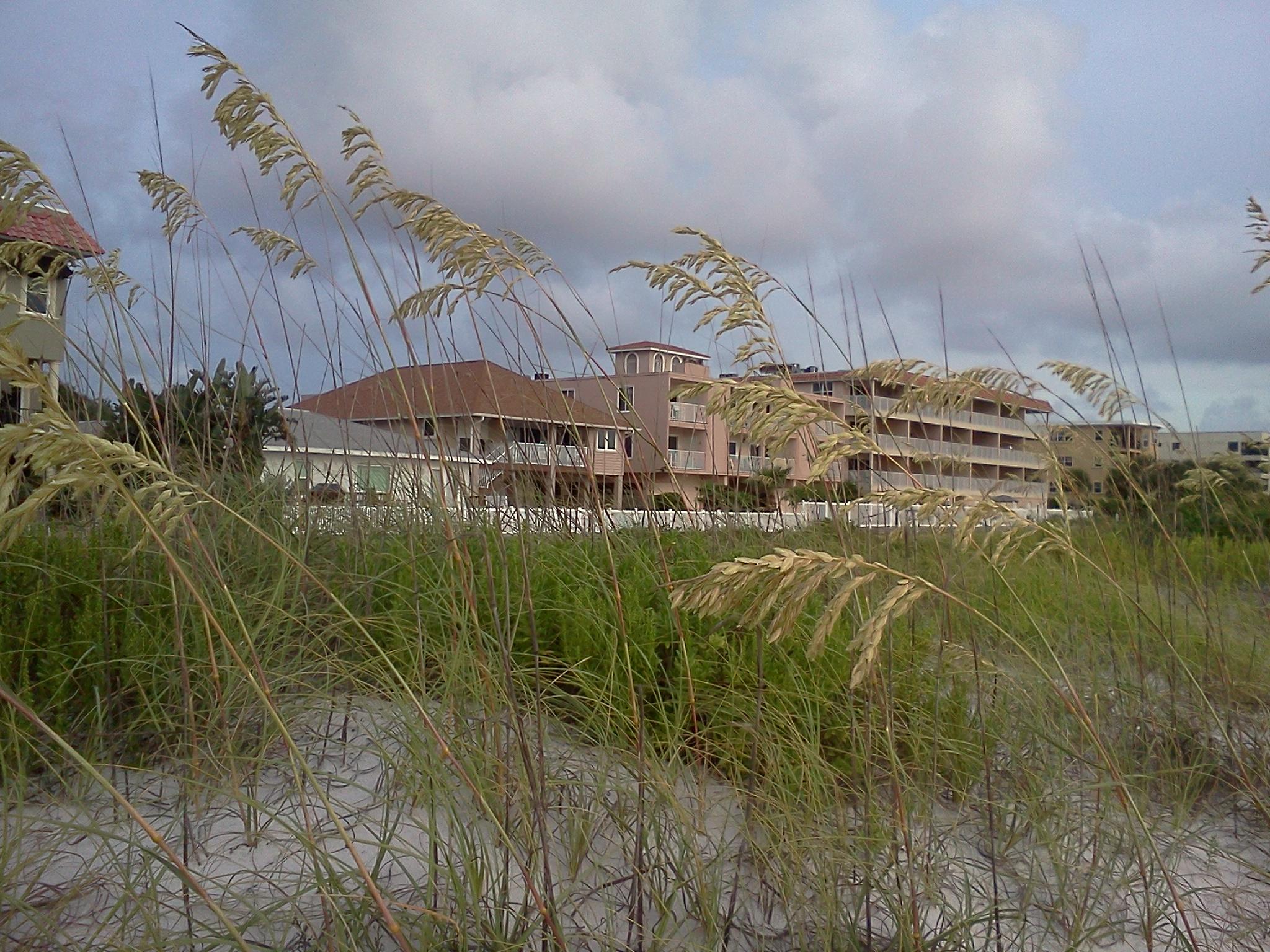 Clearwater, Florida heykip.com