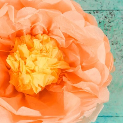 How to Make Tissue Paper Peonies