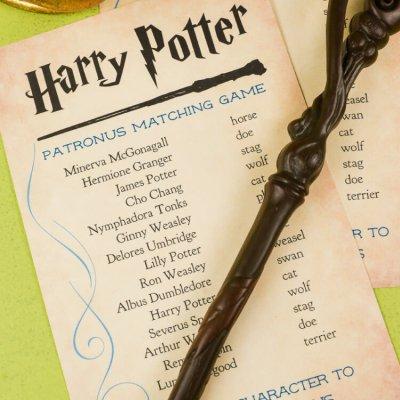Harry Potter Patronus Matching Game