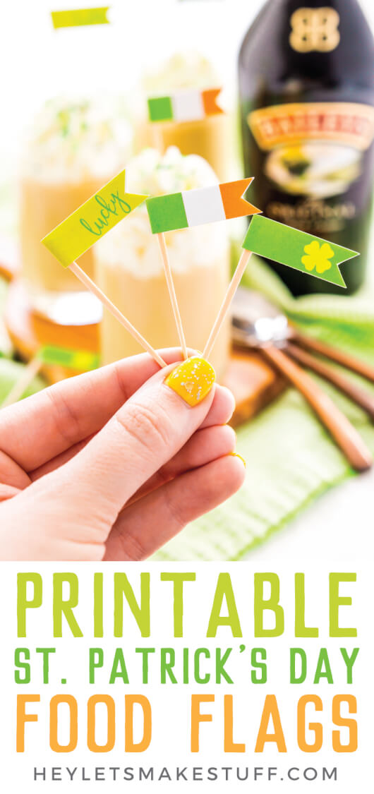 Dress up those St. Patrick's Day inspired drinks with these FREE festive printable food flags! Three versions, great for both Irish food and drinks.  via @heyletsmakestuf