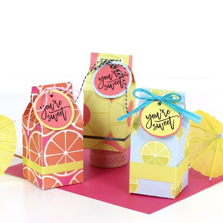 Free Printable Milk Carton Treat Box Template And Cut File