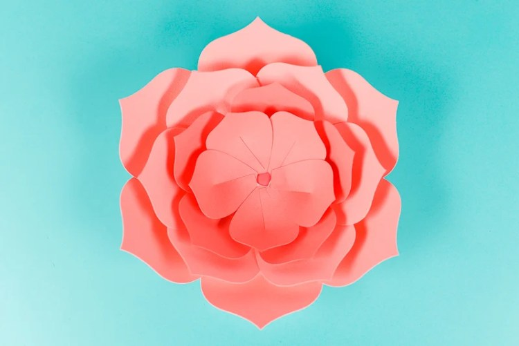 Fourth Layer of Petals