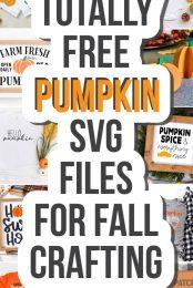 Pin for Free Pumpkin SVG Files