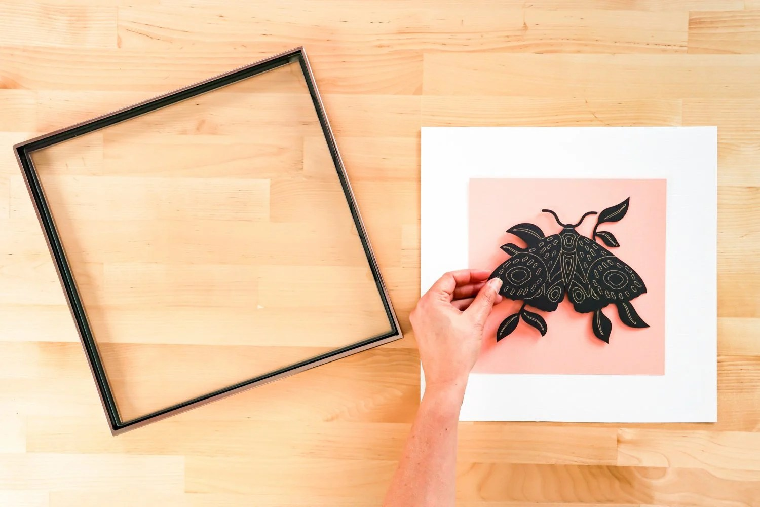 Tape the moth cutout to the pink square of cardstock.