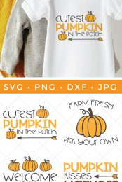pumpkin patch SVG bundle pin image