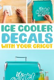 Ice Cooler Decal Pin Image