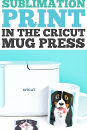 How to Use a Sublimation Print in the Cricut Mug Press pin