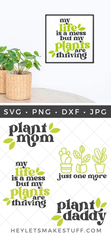 Plant Owner SVG Bundle pin image