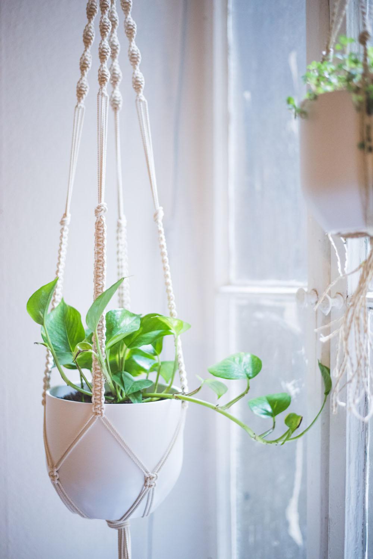 Macrame Plant Hanger Tutorial Heylilahey