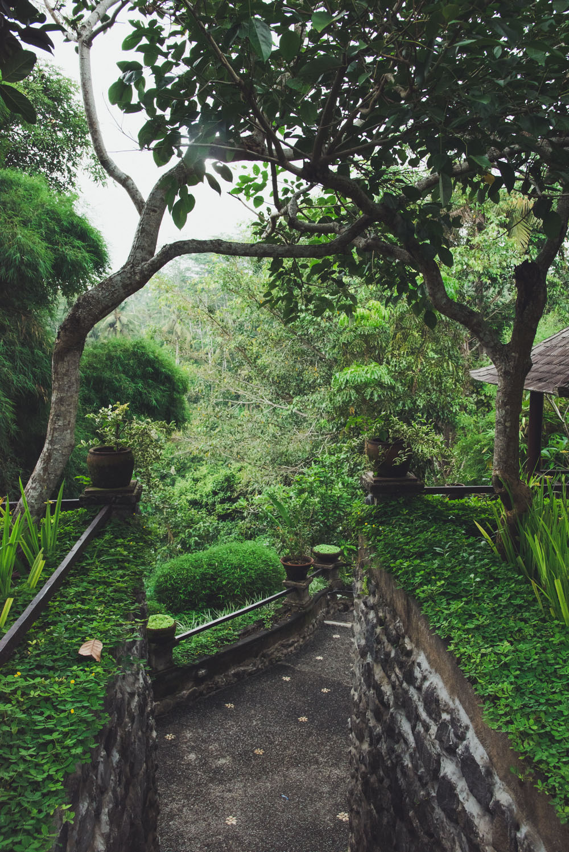 villa awang awang (1 of 31)