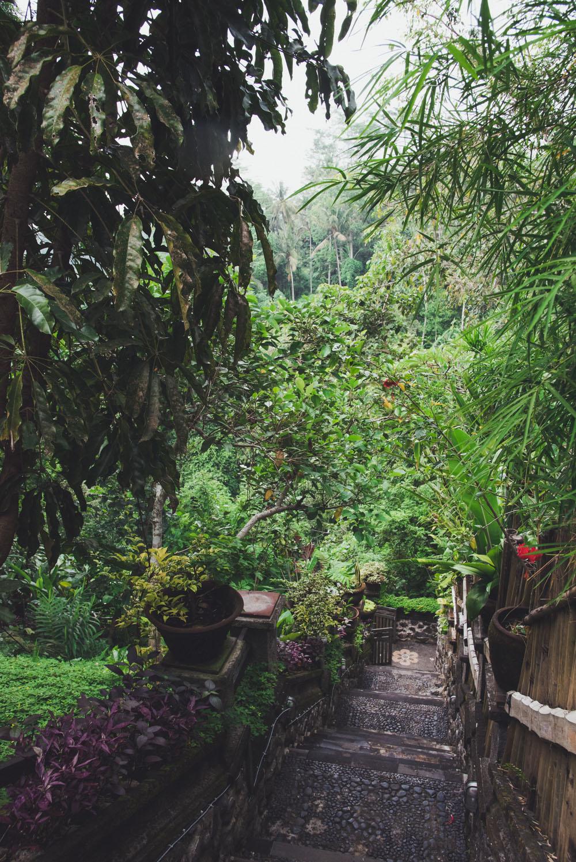 villa awang awang (4 of 31)