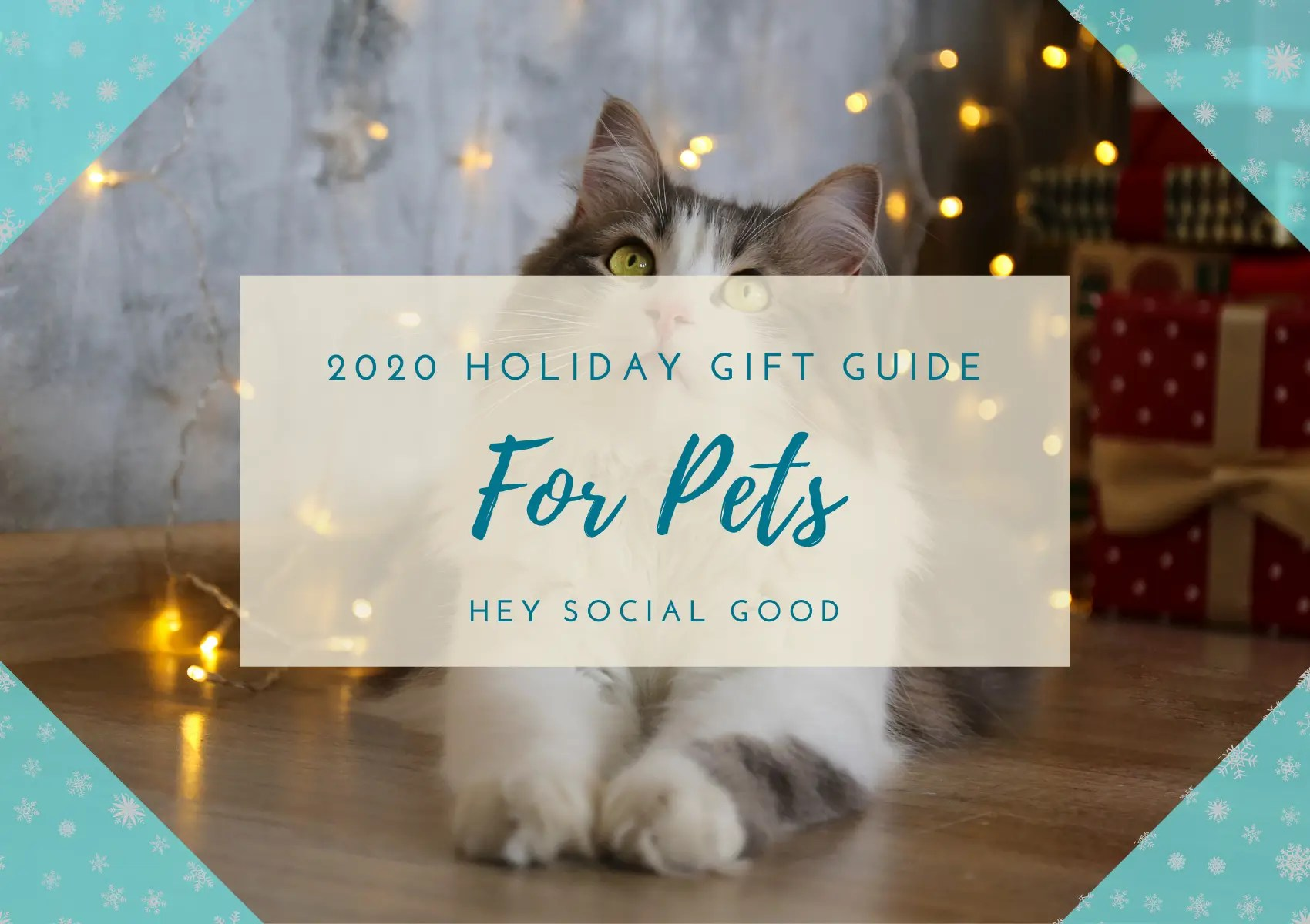 Sustainable and Ethical Holiday Gift's for Pets